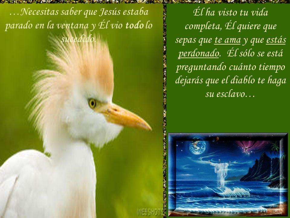 …Necesitas saber que Jesús estaba parado en la ventana y Él vio todo lo sucedido.
