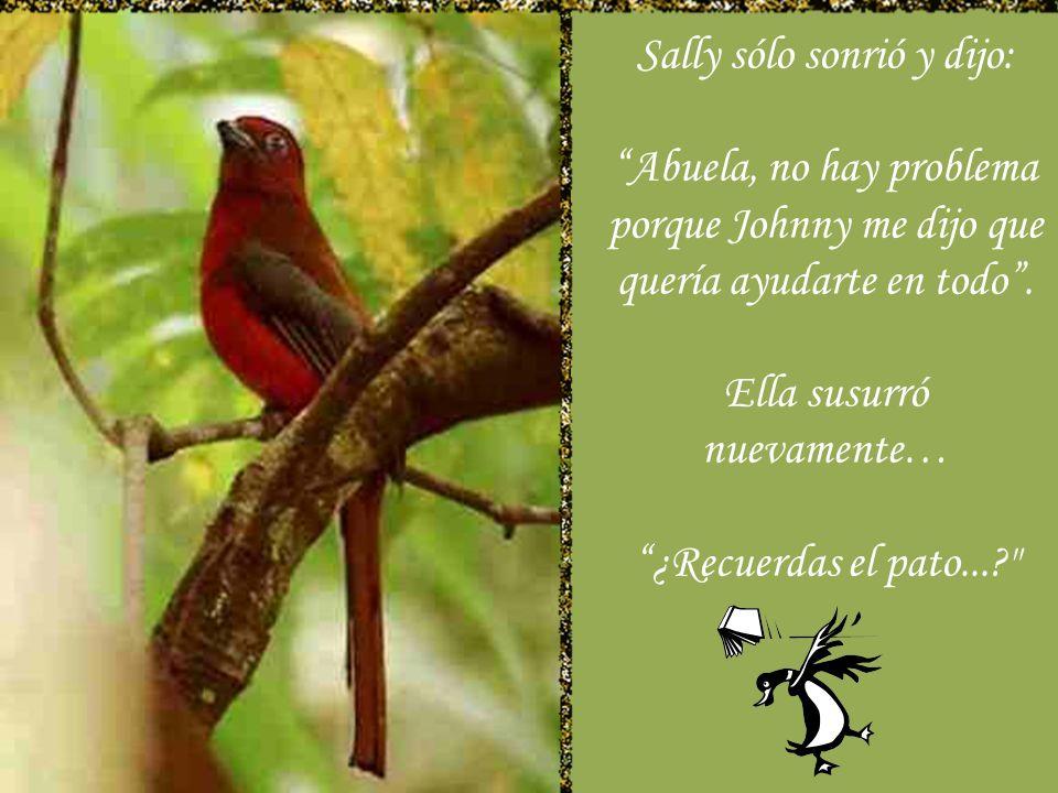 Sally sólo sonrió y dijo:
