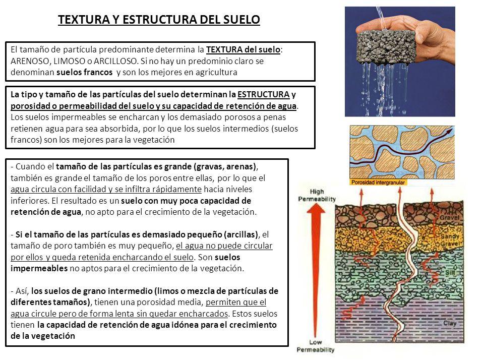 1 definici n e importancia del suelo ppt descargar for A que se denomina suelo