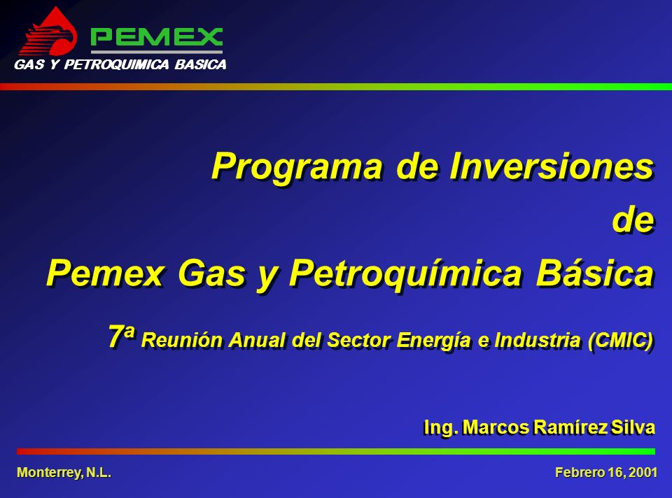 GAS Y PETROQUIMICA BASICA