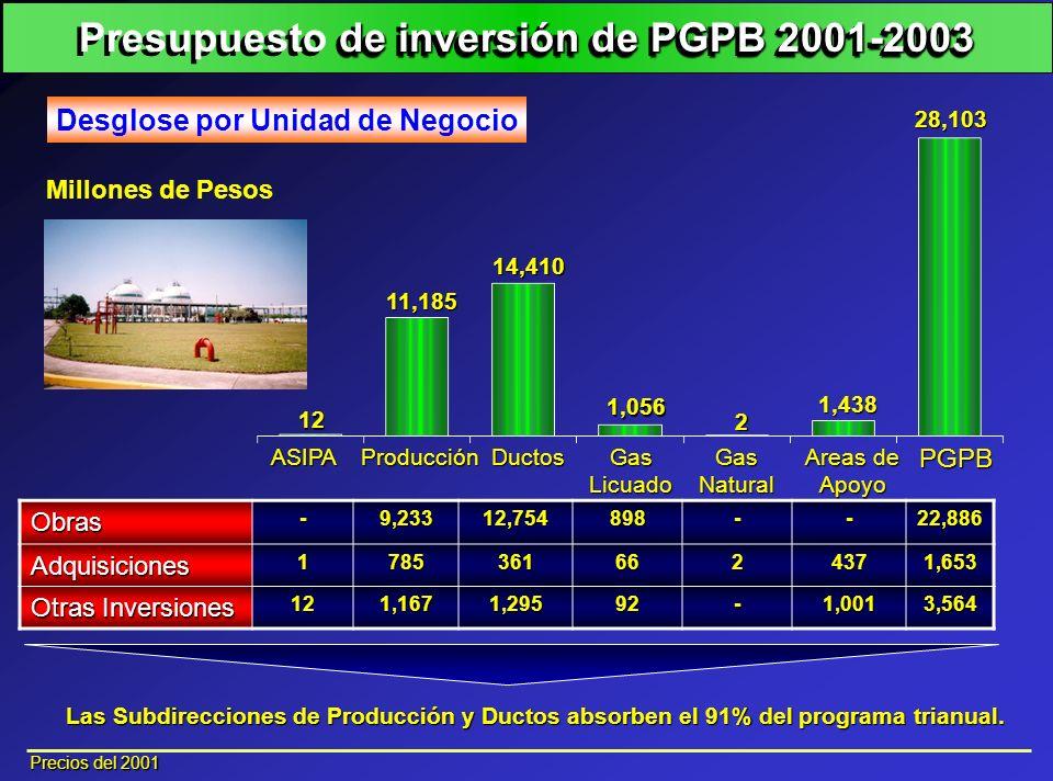 Presupuesto de inversión de PGPB 2001-2003