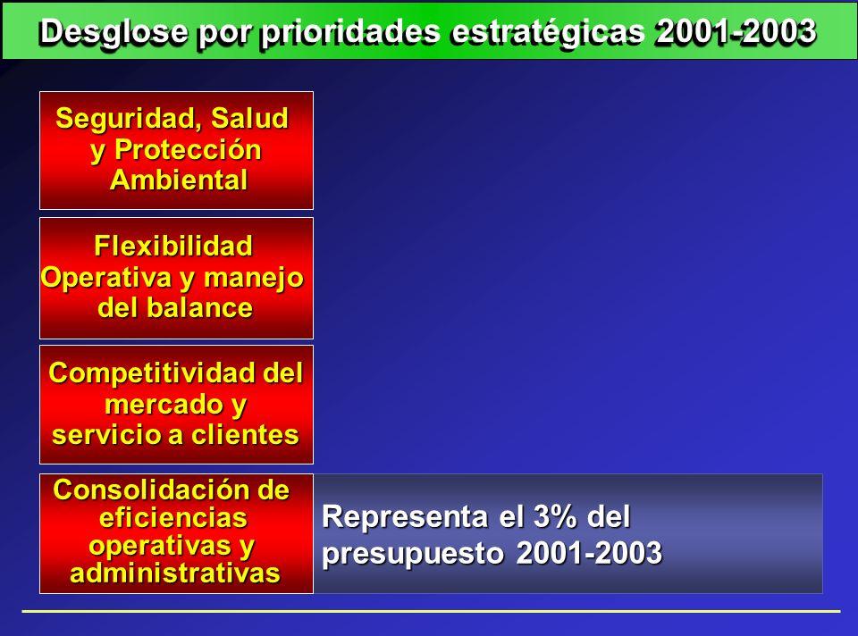 Desglose por prioridades estratégicas 2001-2003