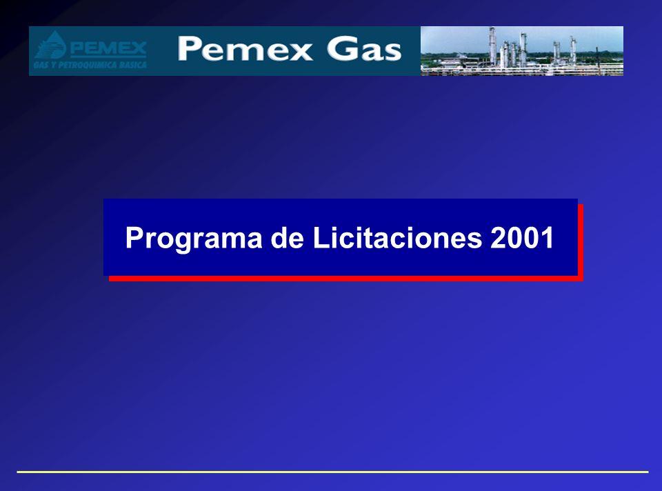 Programa de Licitaciones 2001
