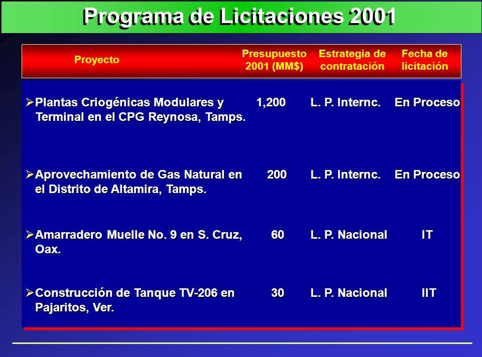 Programa de Licitaciones 2001 Estrategia de contratación