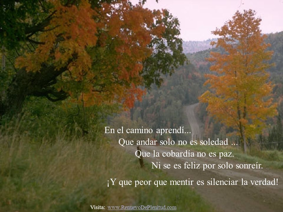 Que andar solo no es soledad ... Que la cobardía no es paz.