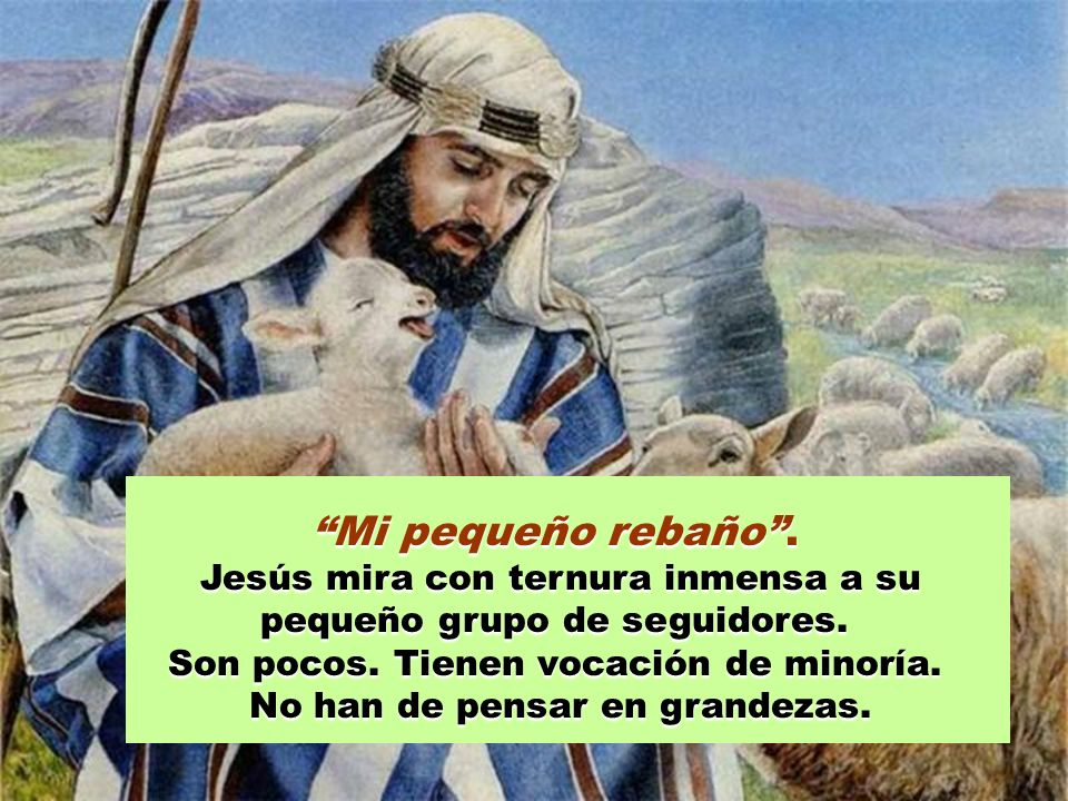 Mi pequeño rebaño . Jesús mira con ternura inmensa a su pequeño grupo de seguidores. Son pocos. Tienen vocación de minoría.