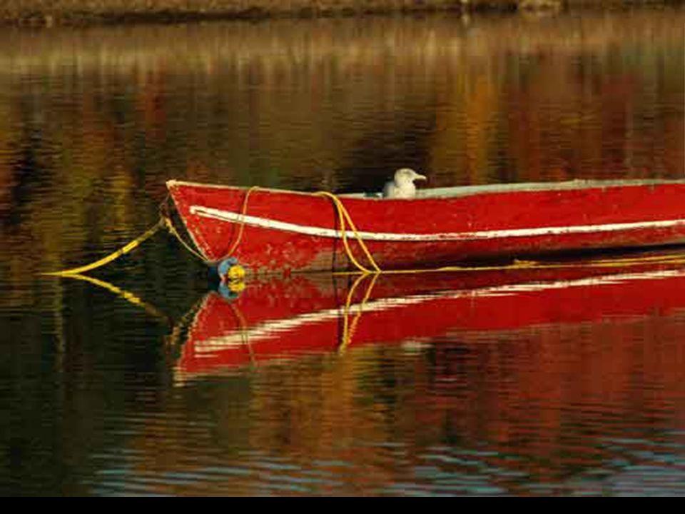 Un hombre fue llamado a la playa para pintar un barco.