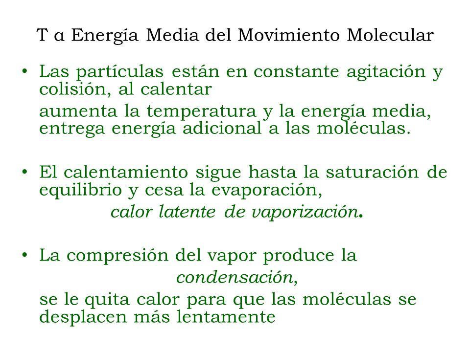 T α Energía Media del Movimiento Molecular
