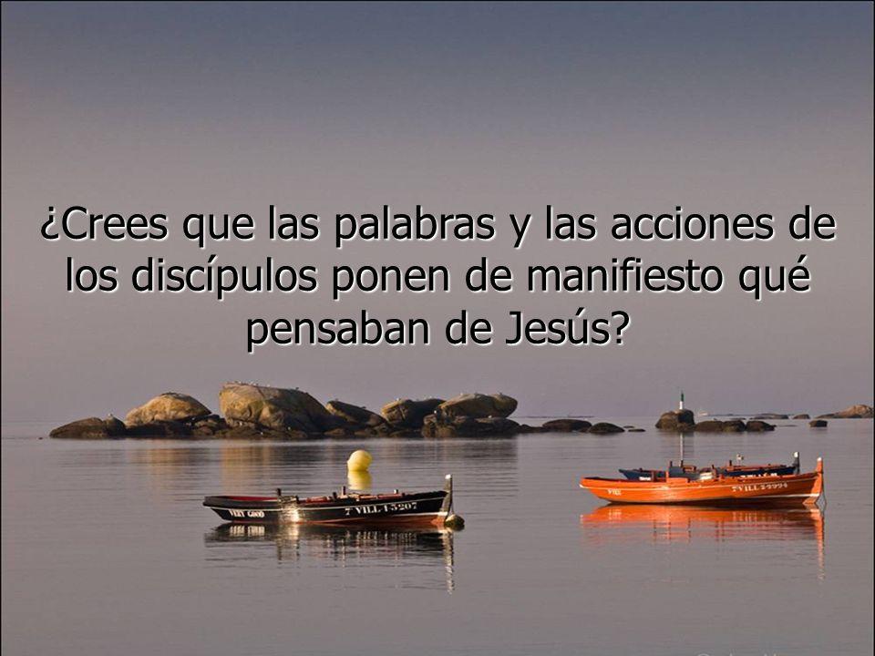 ¿Crees que las palabras y las acciones de los discípulos ponen de manifiesto qué pensaban de Jesús