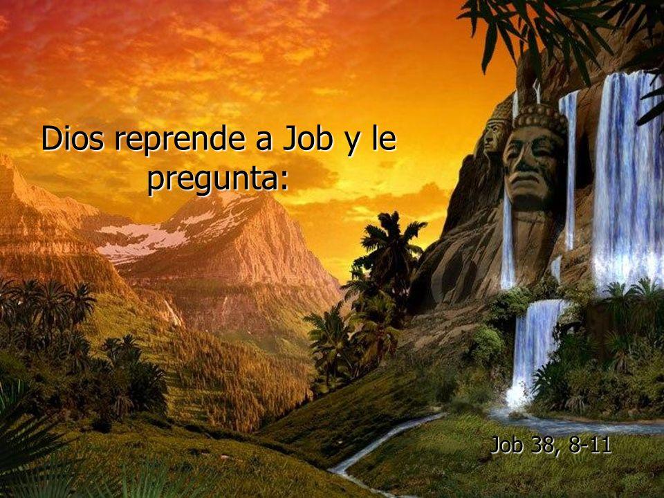 Dios reprende a Job y le pregunta: