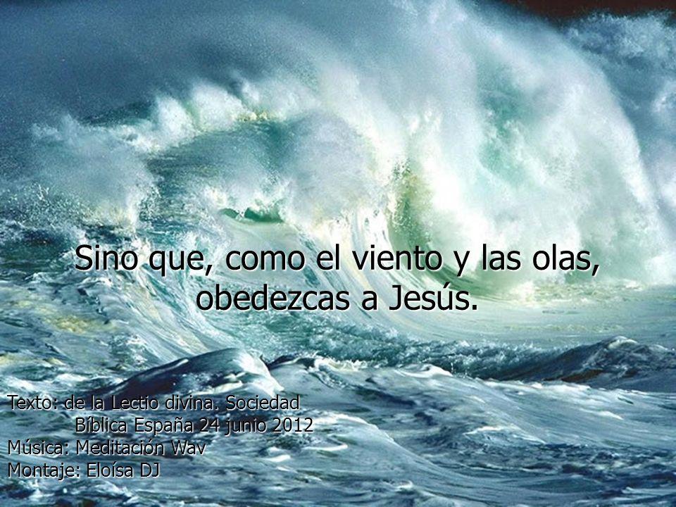 Sino que, como el viento y las olas, obedezcas a Jesús.