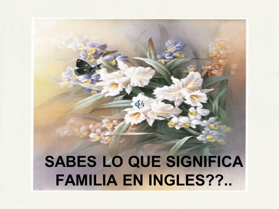 SABES LO QUE SIGNIFICA FAMILIA EN INGLES ..