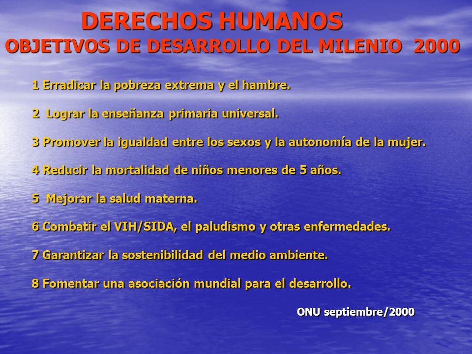 DERECHOS HUMANOS OBJETIVOS DE DESARROLLO DEL MILENIO 2000