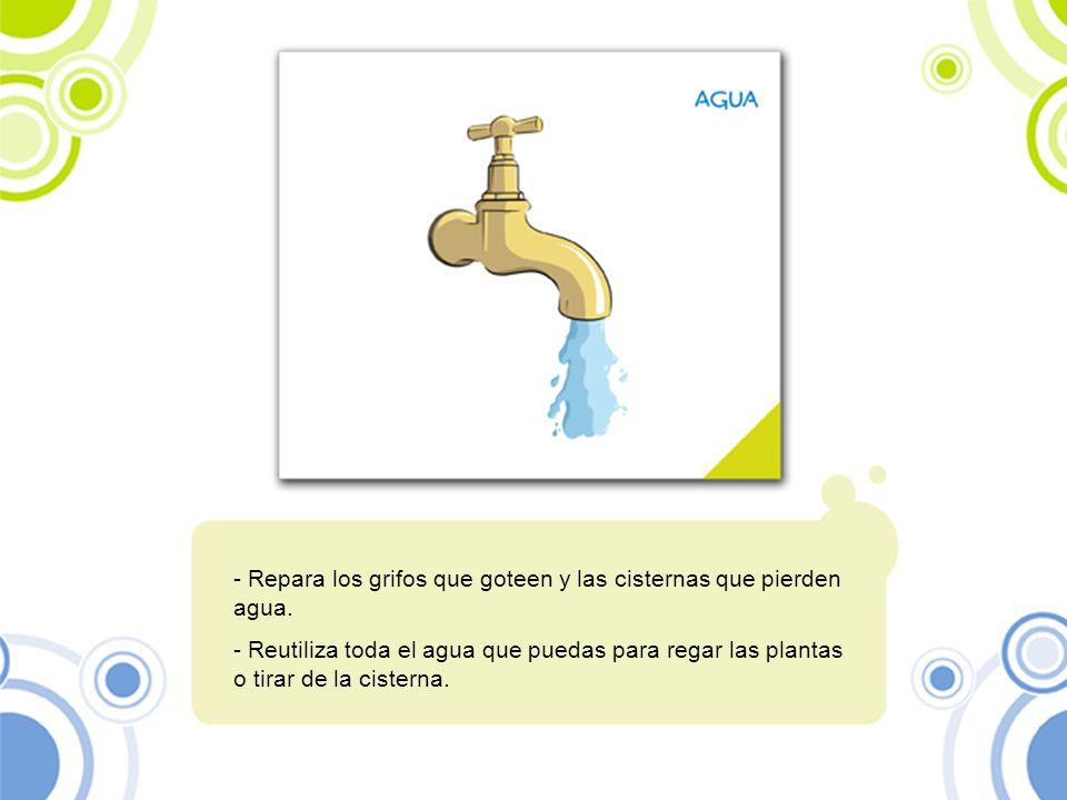 Repara los grifos que goteen y las cisternas que pierden agua.