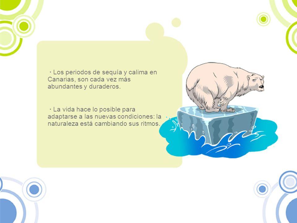 · Los periodos de sequía y calima en Canarias, son cada vez más abundantes y duraderos.