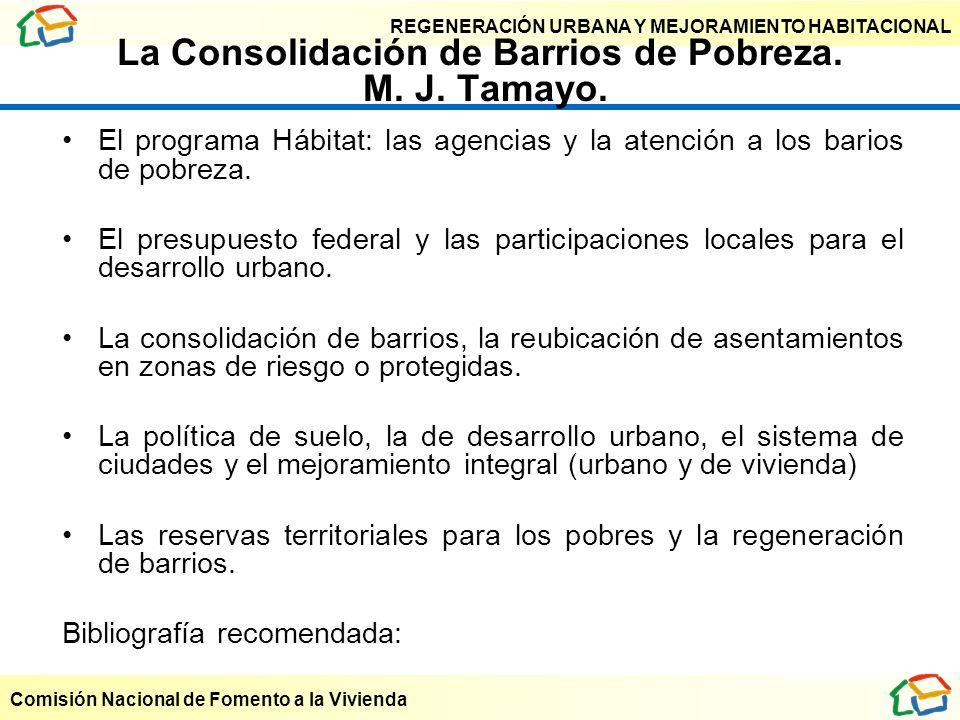 La Consolidación de Barrios de Pobreza. M. J. Tamayo.