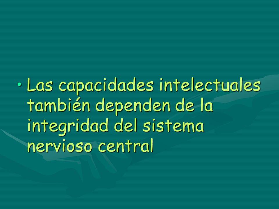 Las capacidades intelectuales también dependen de la integridad del sistema nervioso central