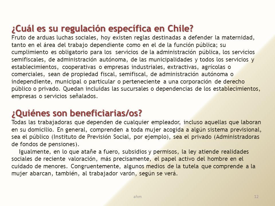 ¿Cuál es su regulación específica en Chile
