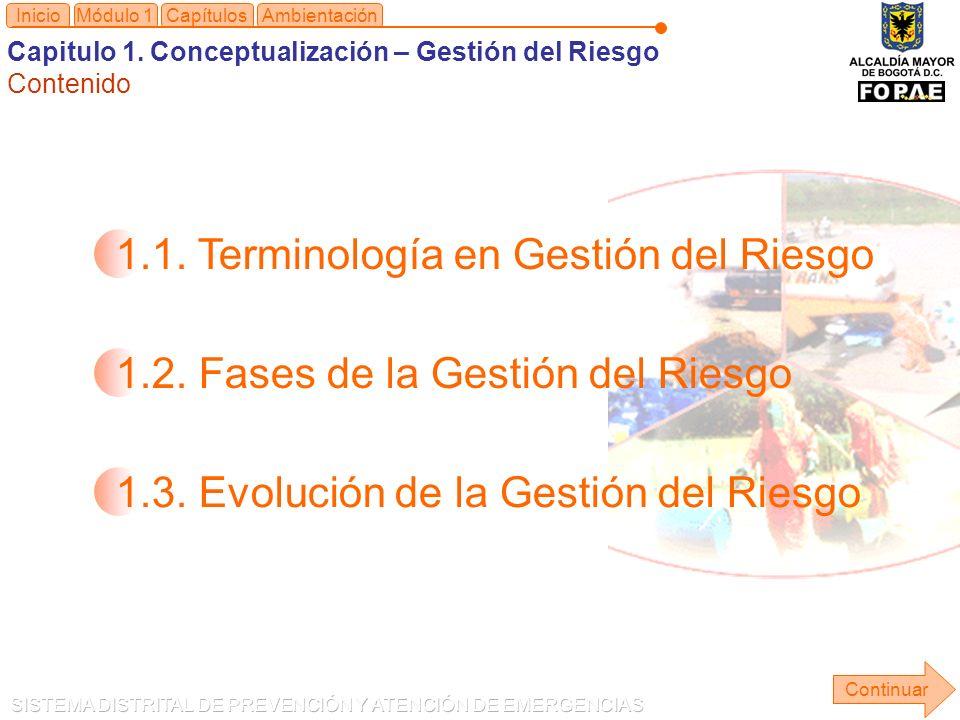 1.1. Terminología en Gestión del Riesgo