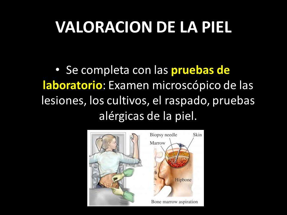 VALORACION DE LA PIEL