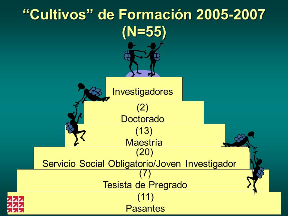 Cultivos de Formación 2005-2007 (N=55)
