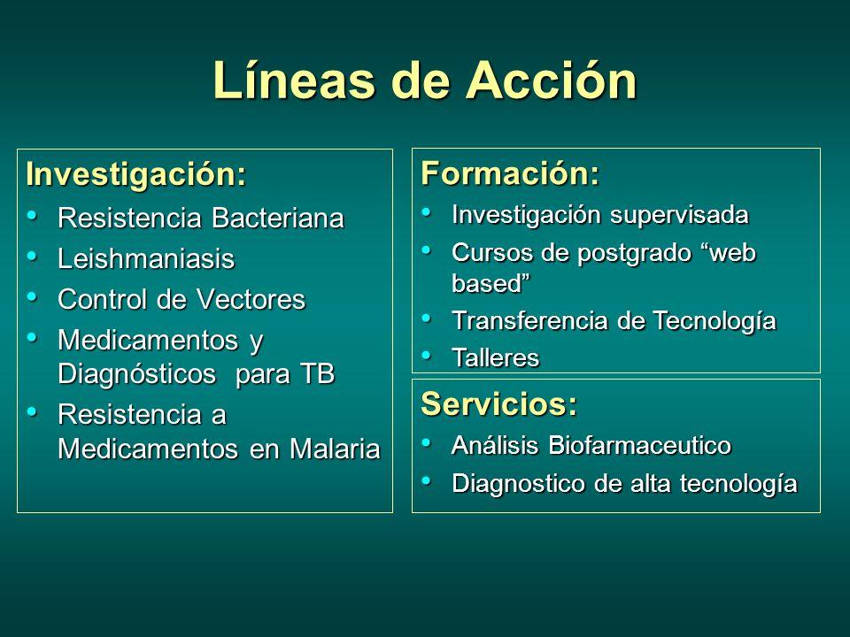 Líneas de Acción Investigación: Formación: Servicios: