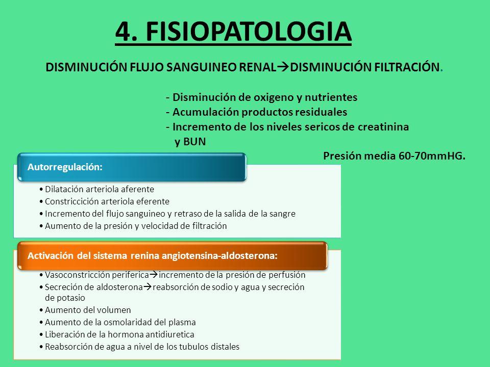 4. FISIOPATOLOGIA DISMINUCIÓN FLUJO SANGUINEO RENALDISMINUCIÓN FILTRACIÓN. - Disminución de oxigeno y nutrientes.