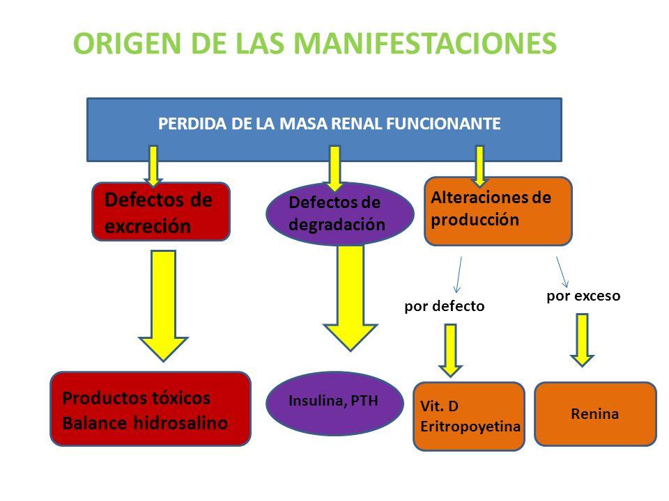 PERDIDA DE LA MASA RENAL FUNCIONANTE