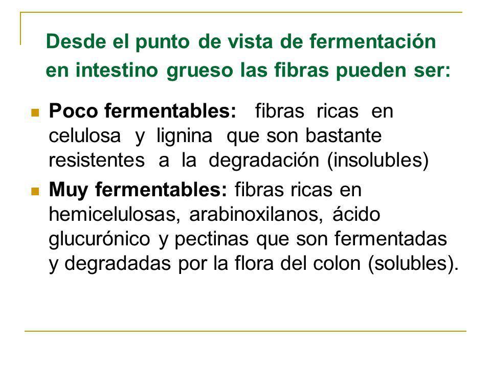 Desde el punto de vista de fermentación en intestino grueso las fibras pueden ser: