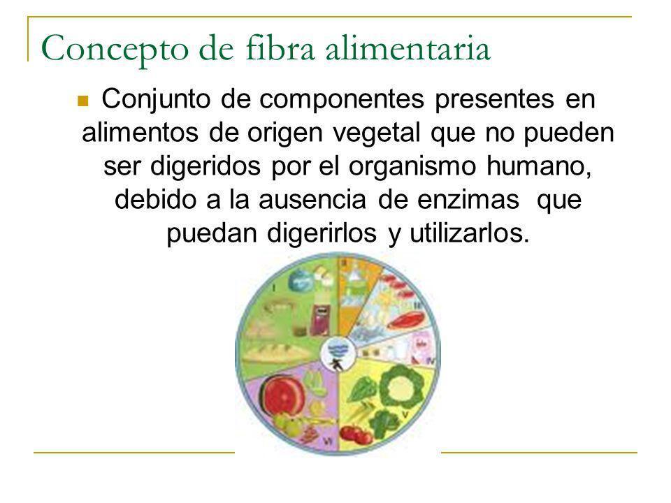 Concepto de fibra alimentaria
