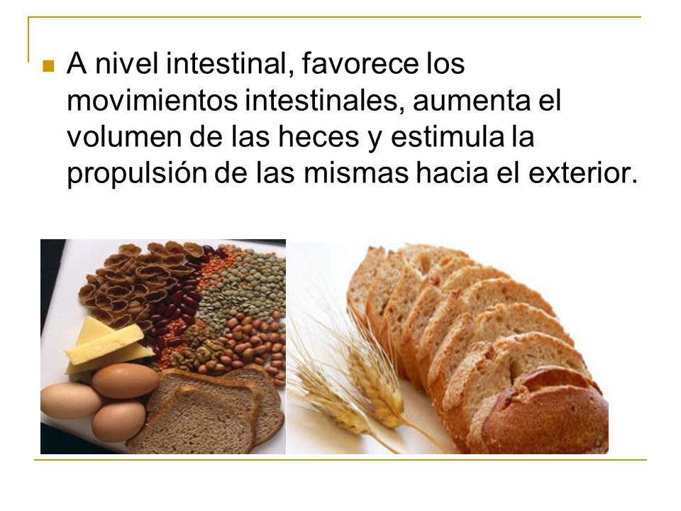 A nivel intestinal, favorece los movimientos intestinales, aumenta el volumen de las heces y estimula la propulsión de las mismas hacia el exterior.