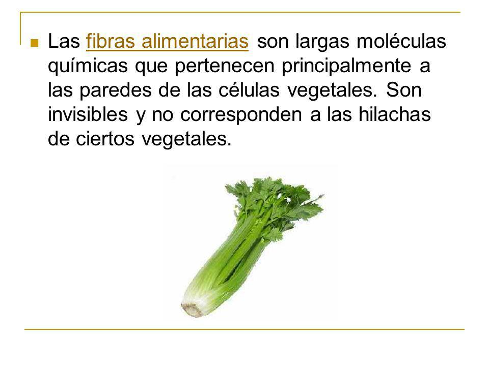 Las fibras alimentarias son largas moléculas químicas que pertenecen principalmente a las paredes de las células vegetales.