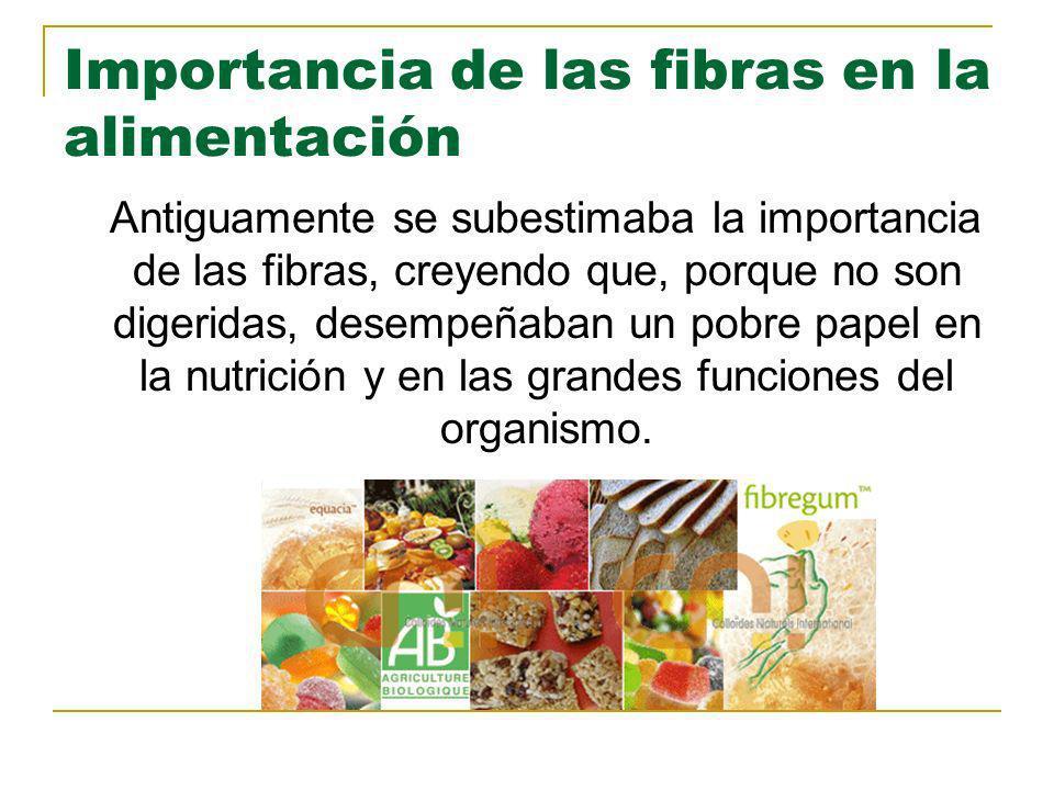 Importancia de las fibras en la alimentación