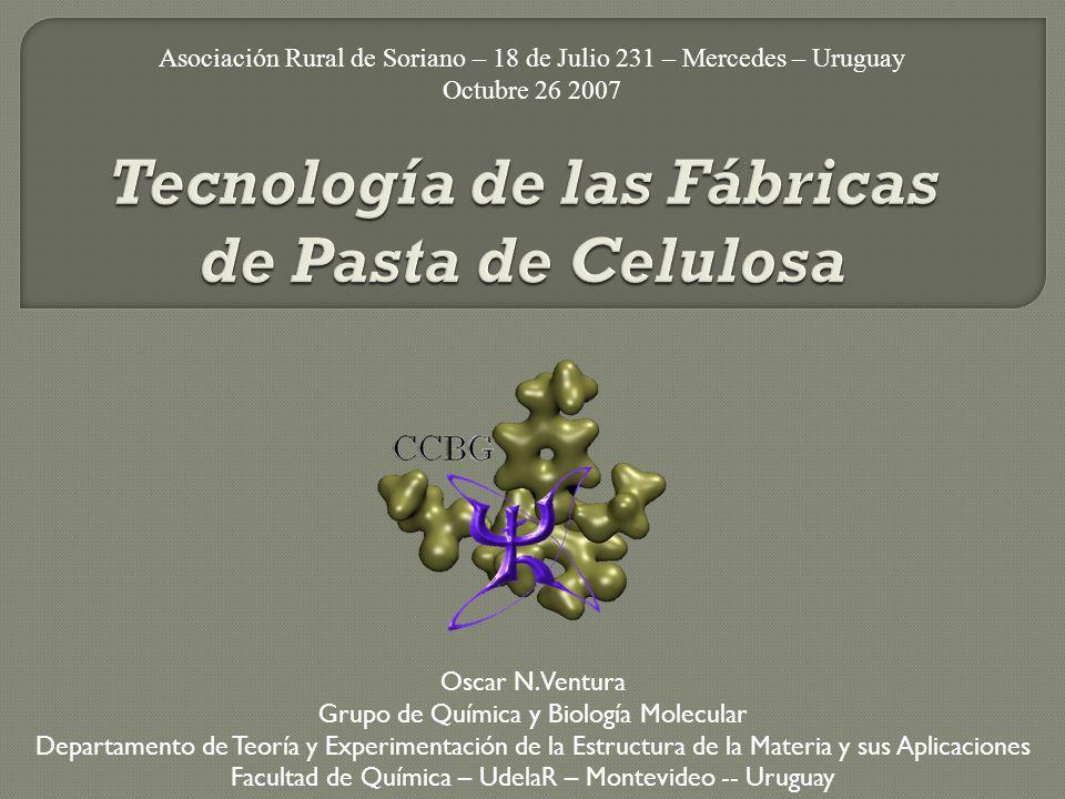 Tecnología de las Fábricas de Pasta de Celulosa