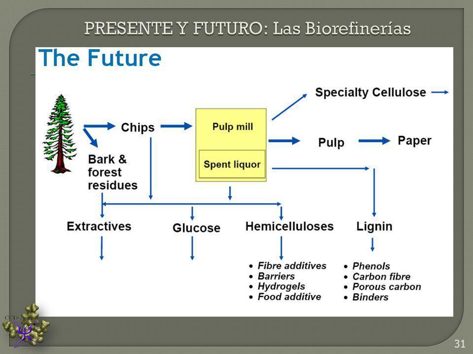 PRESENTE Y FUTURO: Las Biorefinerías