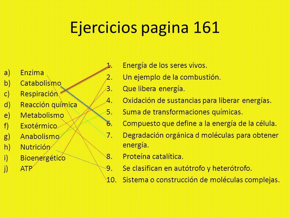 Ejercicios pagina 161 Energía de los seres vivos.
