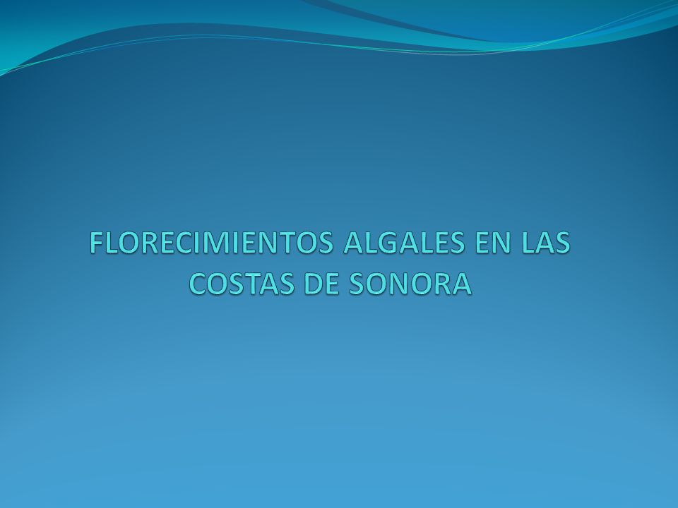 FLORECIMIENTOS ALGALES EN LAS COSTAS DE SONORA