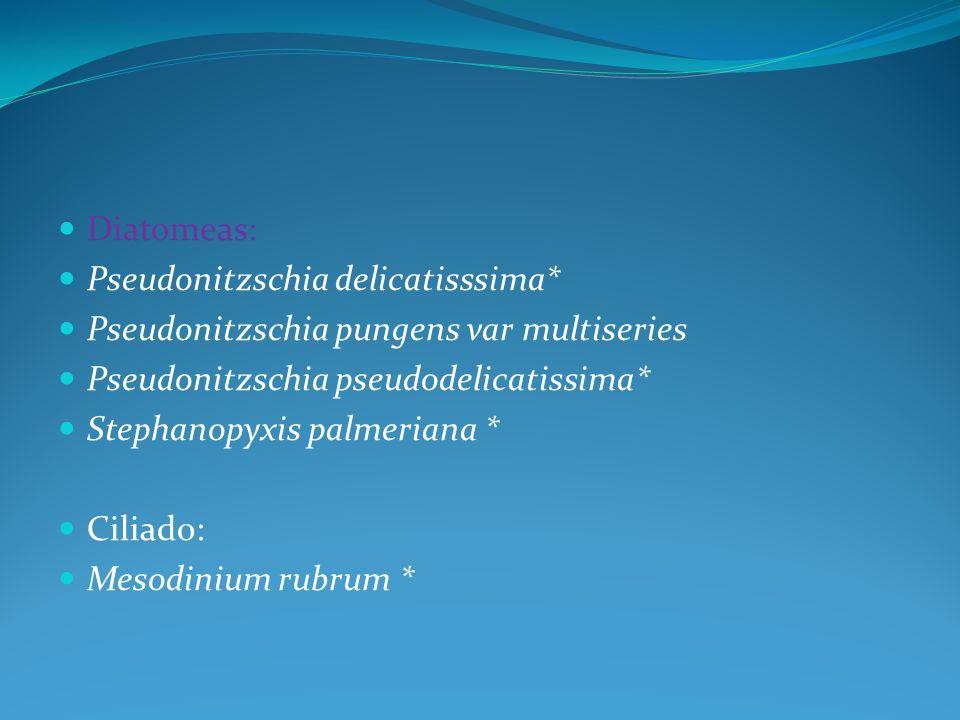 Diatomeas: Pseudonitzschia delicatisssima* Pseudonitzschia pungens var multiseries. Pseudonitzschia pseudodelicatissima*