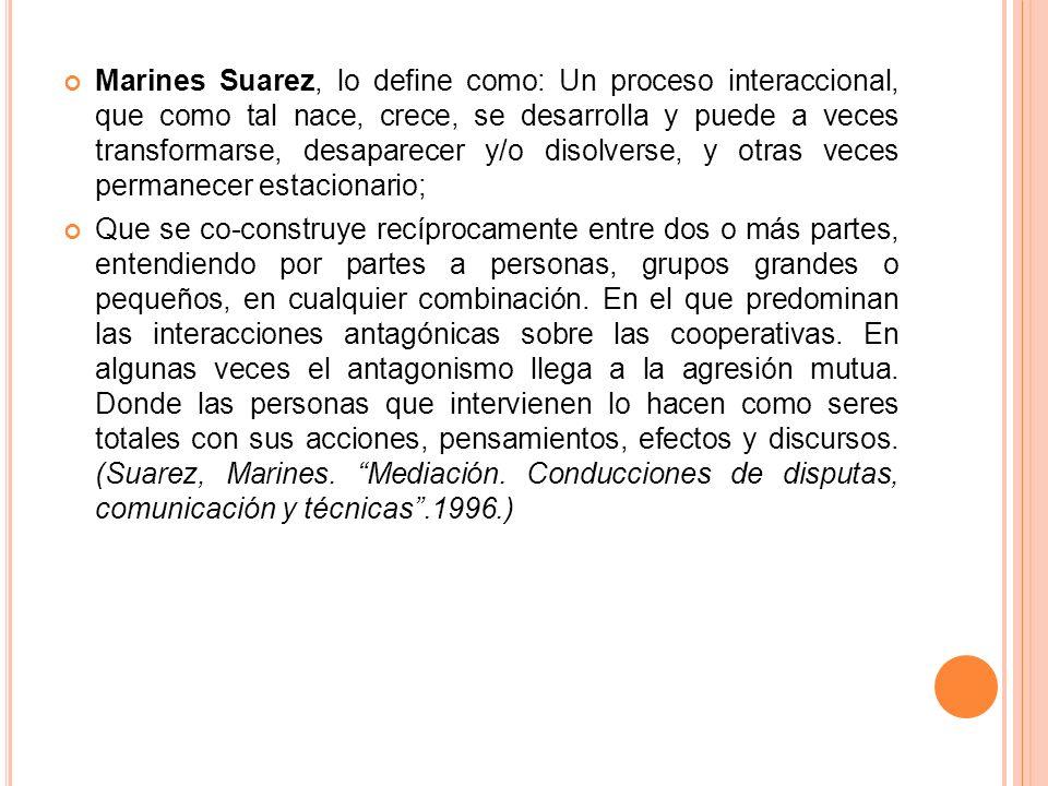 Marines Suarez, lo define como: Un proceso interaccional, que como tal nace, crece, se desarrolla y puede a veces transformarse, desaparecer y/o disolverse, y otras veces permanecer estacionario;
