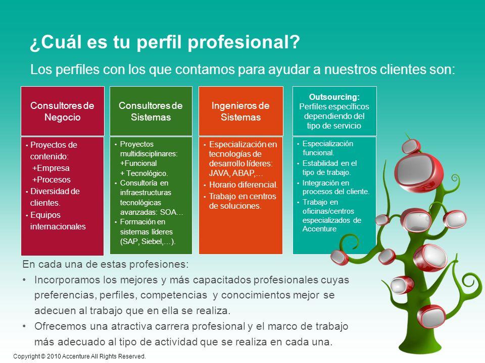 ¿Cuál es tu perfil profesional