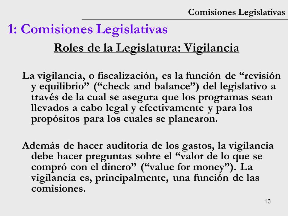 Roles de la Legislatura: Vigilancia