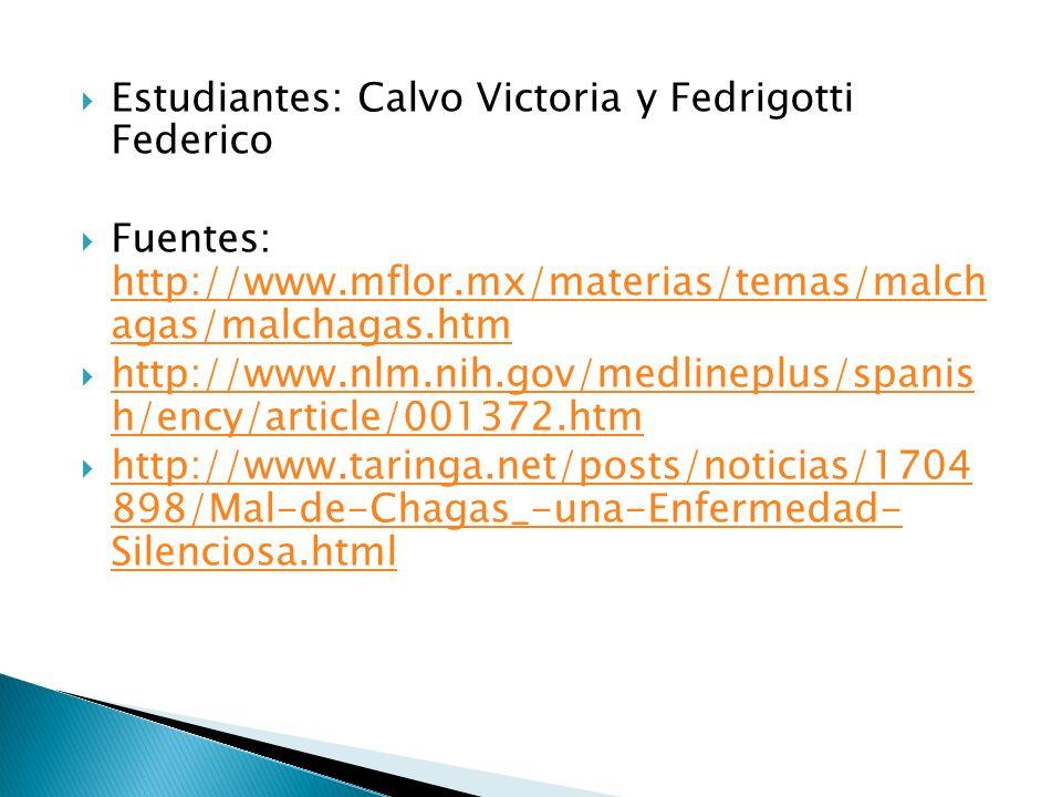 Estudiantes: Calvo Victoria y Fedrigotti Federico