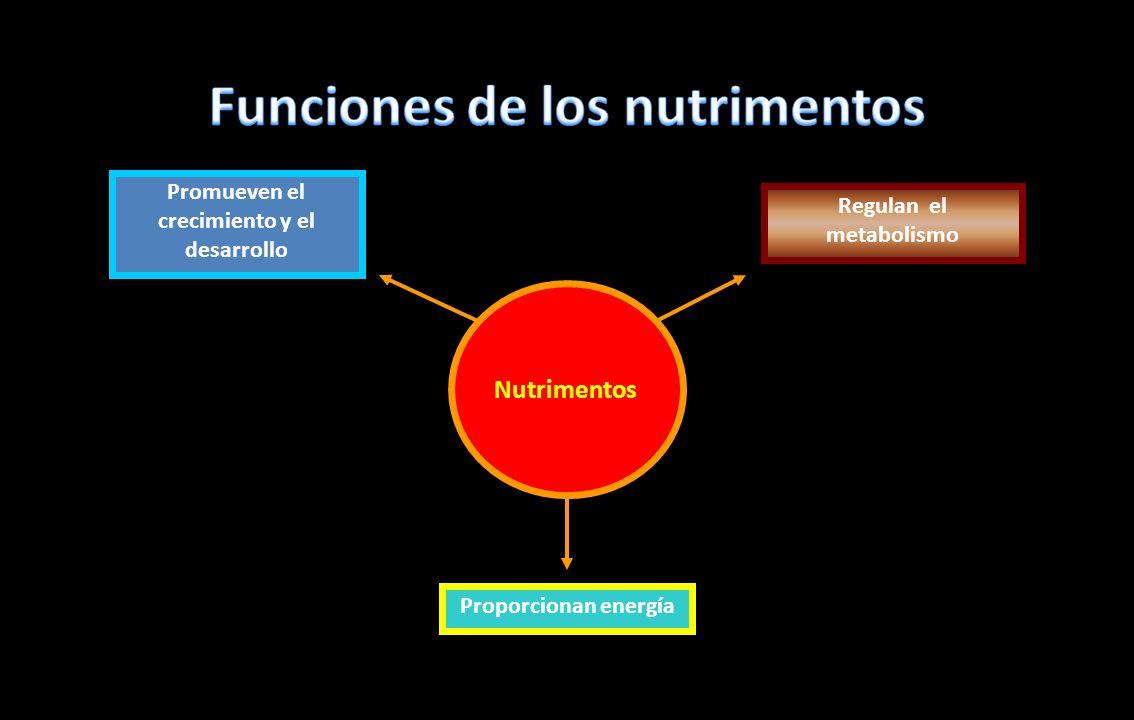 Funciones de los nutrimentos