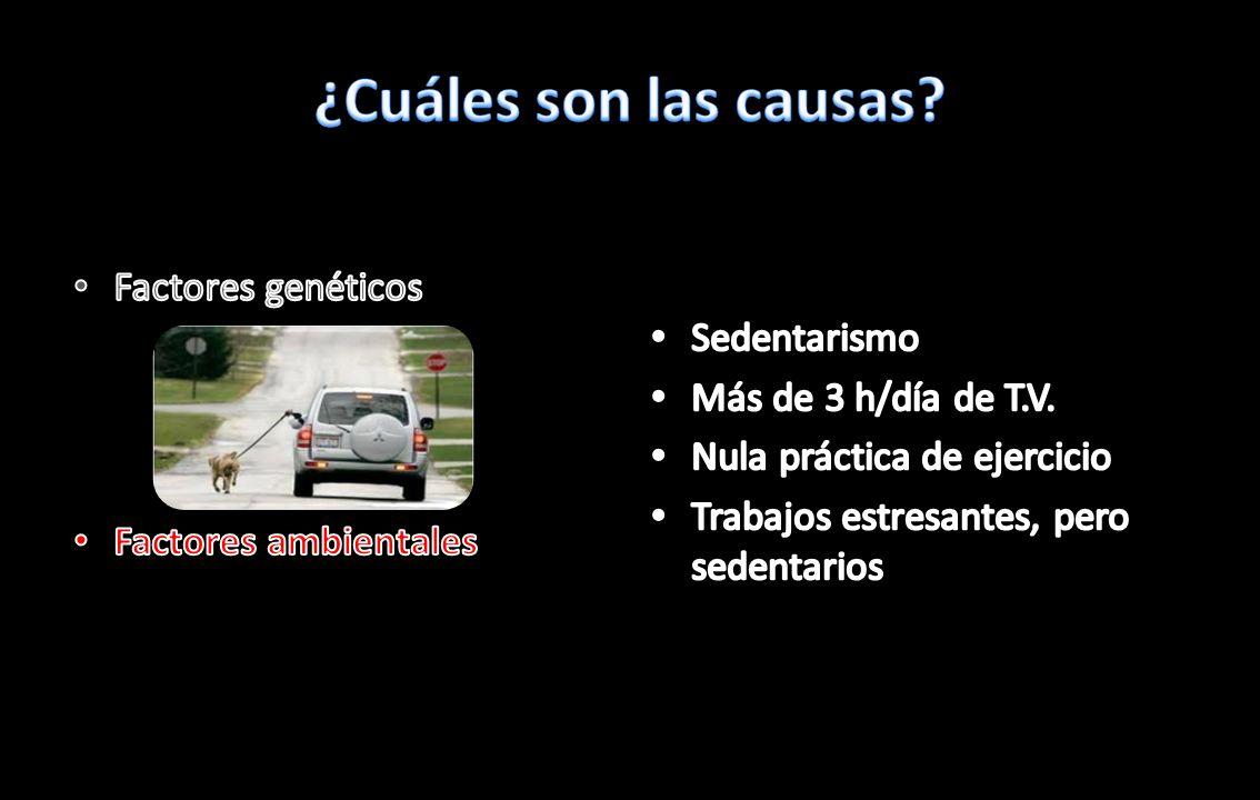 ¿Cuáles son las causas Factores genéticos Sedentarismo