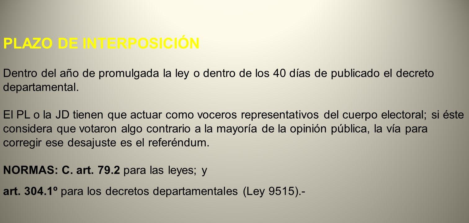 PLAZO DE INTERPOSICIÓN
