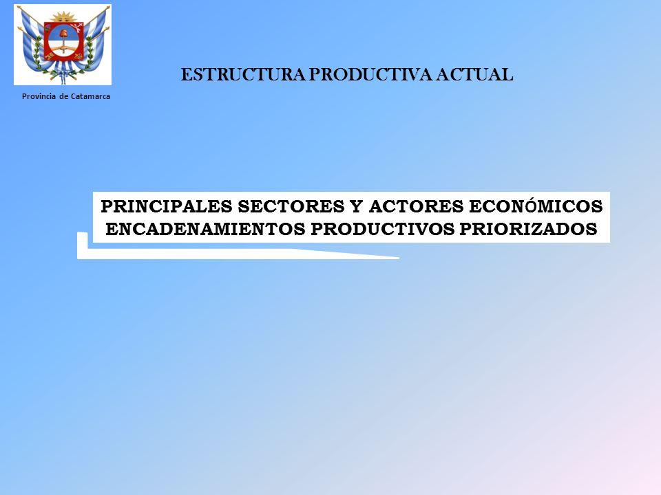 ESTRUCTURA PRODUCTIVA ACTUAL PRINCIPALES SECTORES Y ACTORES ECONÓMICOS