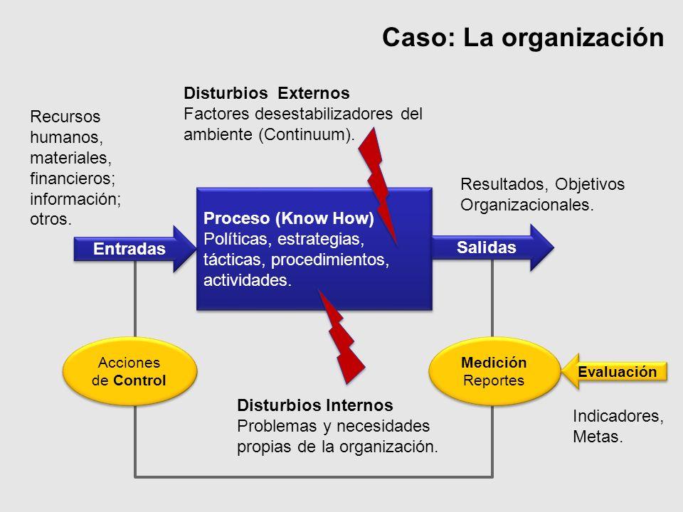 Caso: La organización Disturbios Externos