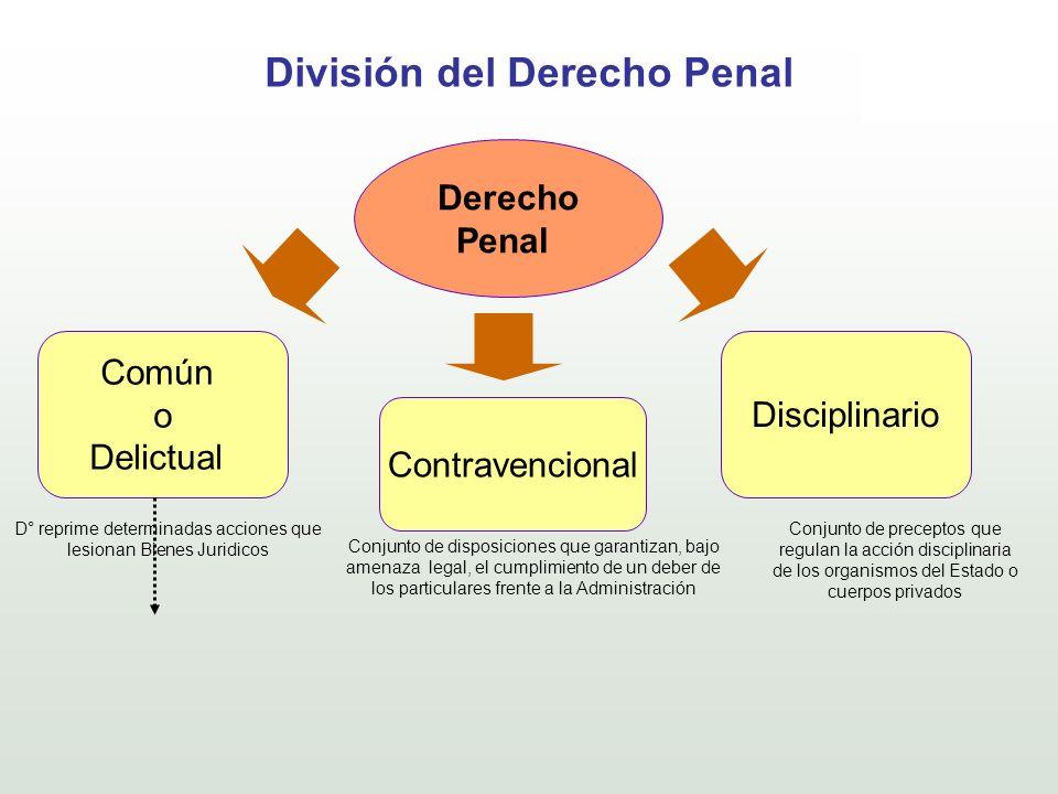 División del Derecho Penal