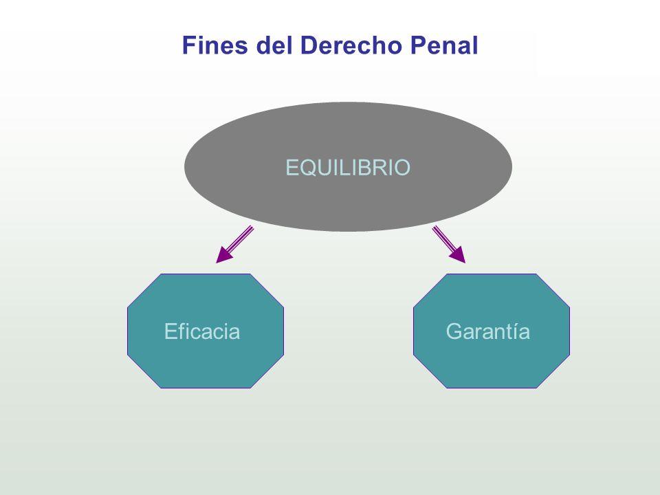 Fines del Derecho Penal