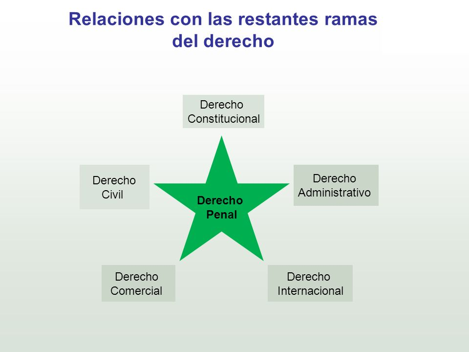 Relaciones con las restantes ramas del derecho